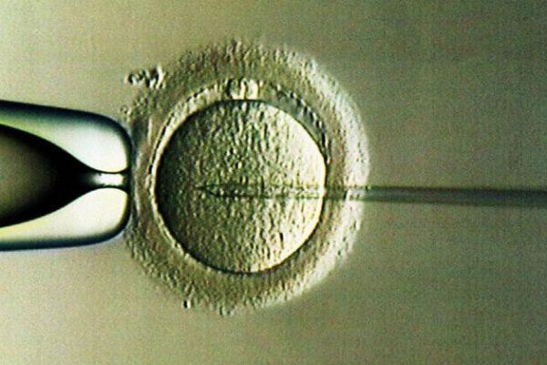 Infertilitatea nu este o condamnare