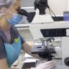 Medicamentele utilizate în clinică pentru tratarea infertilitatii